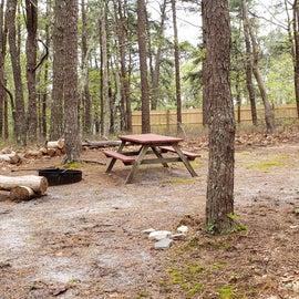 9 Wellfleet Hollow State Park