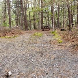 10 Wellfleet Hollow State Park