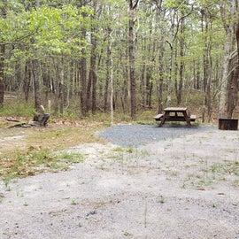 15 Wellfleet Hollow State Park