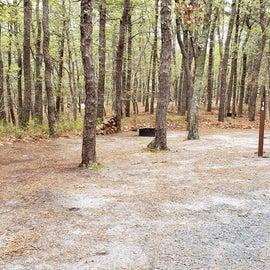 16 Wellfleet Hollow State Park