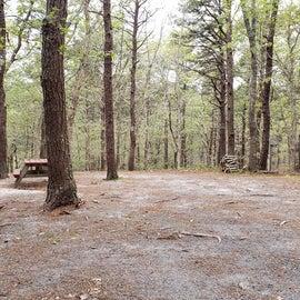 20 Wellfleet Hollow State Park