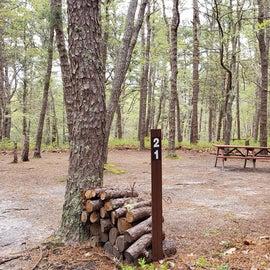 21 Wellfleet Hollow State Park
