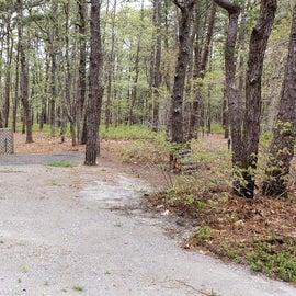 29 Wellfleet Hollow State Park