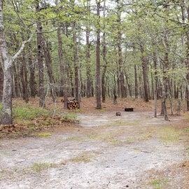 27 Wellfleet Hollow State Park