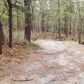 26 Wellfleet Hollow State Park