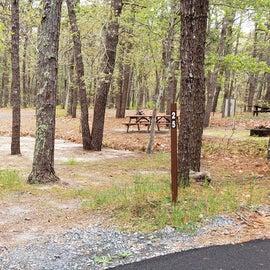 25 Wellfleet Hollow State Park