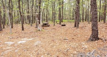 Wellfleet Hollow State Park