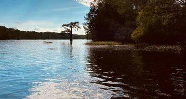 Spring Bayou Wildlife Management Area