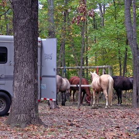 A horse camping site at Wolf Creek.