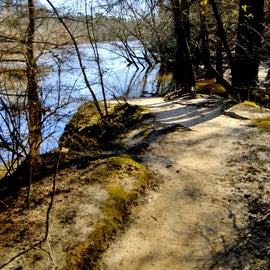 At the end of the 350 yard trail, it comes to an end at the Neuse River.