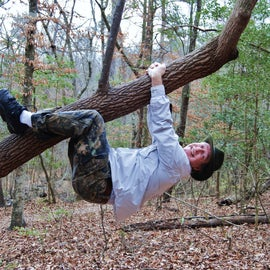 """This tree along the """"Bird Trail"""" was begging to be climbed."""
