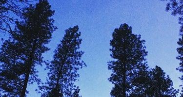 Boise/Pine Flats