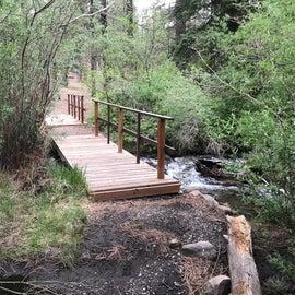 Little bridge over the stream