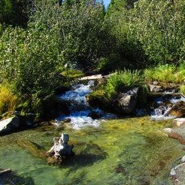 Feeder stream into Bear Paw