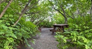 Bear Paw RV Park II (Adults Only)
