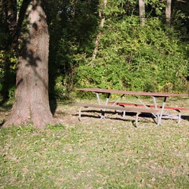 A primitive site at Kaskaskia River Campground
