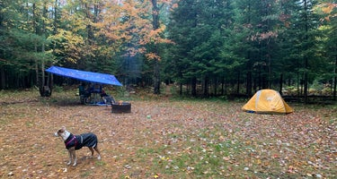 Old US-131 State Forest Campground
