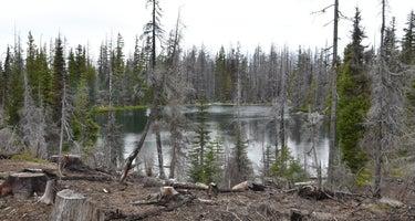 Lava Camp Lake Campground