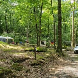 site 51, or adjacent