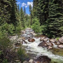 Goose Creek in summer