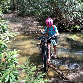 Clear Creek State Forest Trails at Beartown Rocks