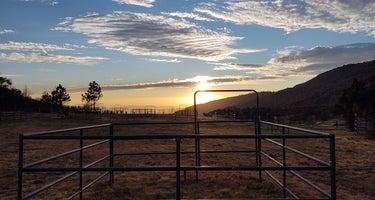 McCall Equestrian Park