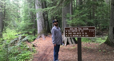 Giant White Pine Campground