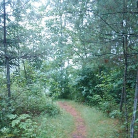 Path from the VT 102 parking area to the campsites