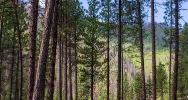 Pine Flats (Id)