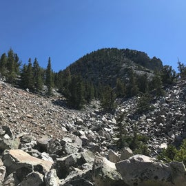 View from trail out of Wheeler Peak campground, within easy driving distance of Upper Lehman Campground.
