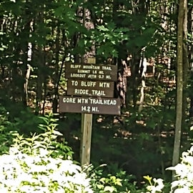 This was Bluff mountain trail near brighton state park, we had to pass some time before we could check in and this hike was perfect!