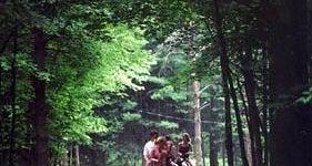 Pine Crest Cabins