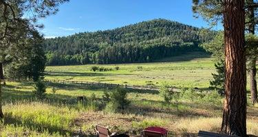 Williams Creek Campground