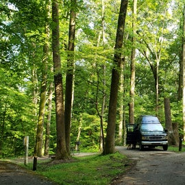 Our campsite, #28