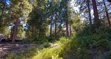 Black Mountain (san Bernardino)