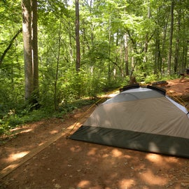 Here is tent site 4 from another perspective.