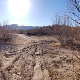 Lots of open areas, none of the vegetation is very shady, and the dirt is VERY soft/powdery