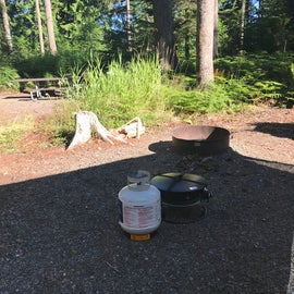 Campsite Fire ring plus a private propane fire ring in case there is a burn ban on.