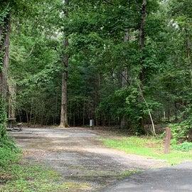 Camp sites good sizes