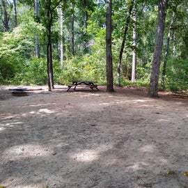 site 11 is the best for tent campers!