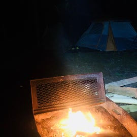 Free (wet) fire wood ;)