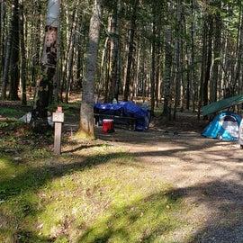Site 28 Aroostock State Park