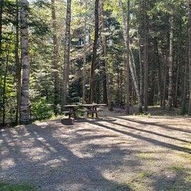 Site 17 Aroostock State Park