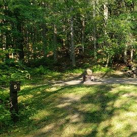 Site 5 Aroostock State Park