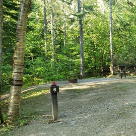Site 6 Aroostock State Park