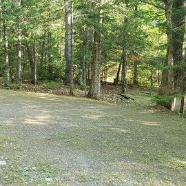 Site 8 Aroostock State Park