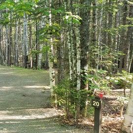 Site 20 Aroostock State Park