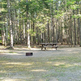 Site 22 Aroostock State Park