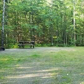 Site 21 Aroostock State Park