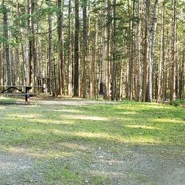 Site 24 Aroostock State Park